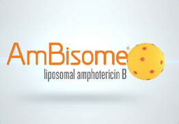 Ambisome Transition temperature of liposomes 3D Video