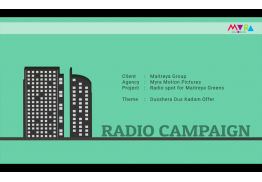 Multi-Lingual Radio Campaigns: 4 spots