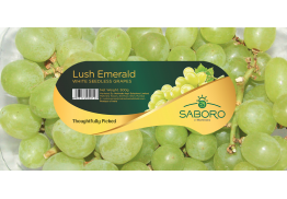 Defining and communicating the Saboro Fruits value proposition to establish a differentiated presence in the competitive global fresh fruit retail industry