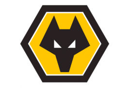 Wolves FC (English Premier League Club)